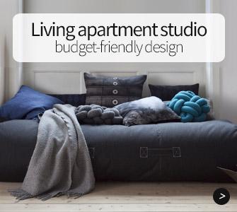 Living apartment studio, budget-friendly design