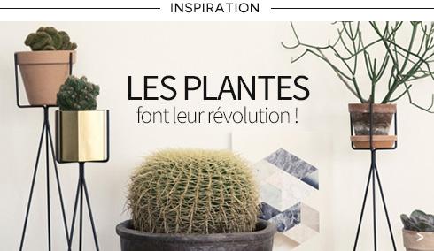 Pots et plantes