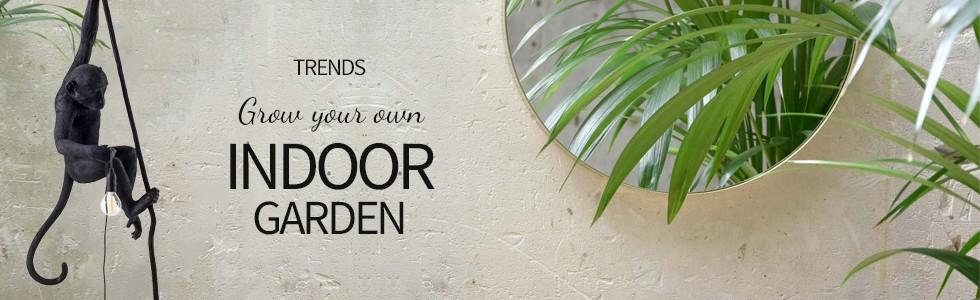 Grow your own Indoor Garden