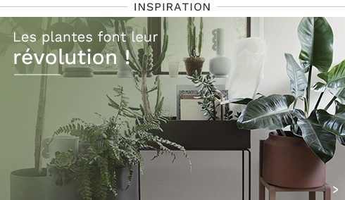 Plantes   Madeindesign.ch